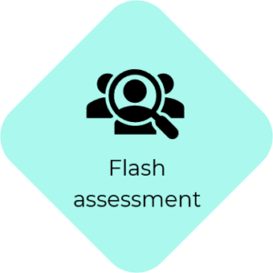 flash assessment